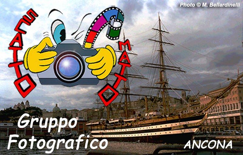 1998 - Il Porto