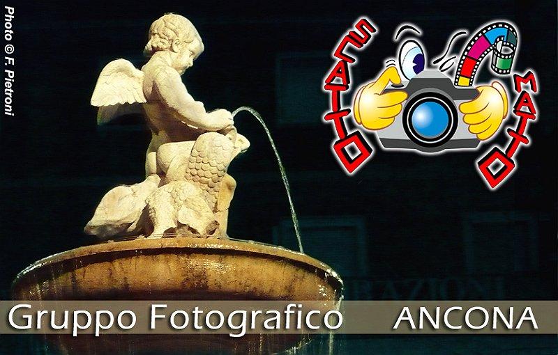 2009 - La Fontana dei Cavalli