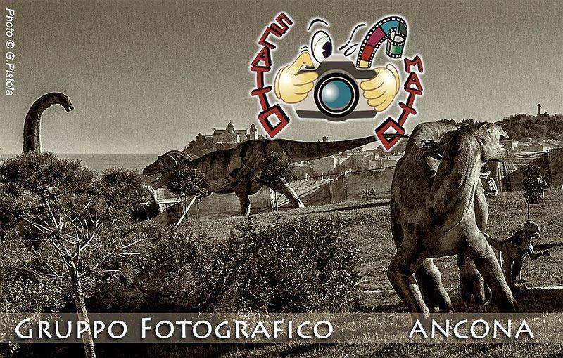 2014 - Gli Antenati di Ancona